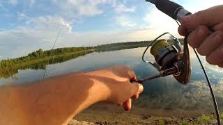 Рыбалка ногинск электросталь 2020 шерна