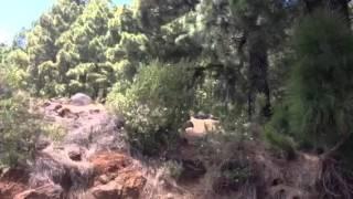 Video del alojamiento Casa Del Maestro