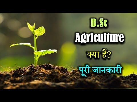 , title : 'What is B.Sc. Agriculture With Full Information? – [Hindi] – Quick Support