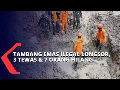 tambang emas ilegal longsor orang tewas dan lainnya kini masih dalam pencarian