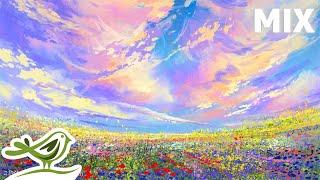 Friedlicher Musik-Mix • Entspannen Sie sich in einem Feld voller Blumen