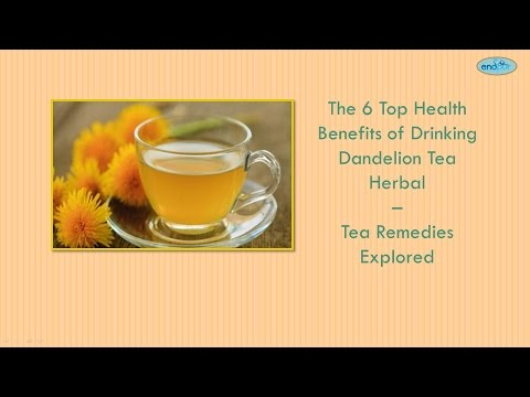 Video The 6 Top Health Benefits of Drinking Dandelion Tea Herbal - Tea Remedies Explored