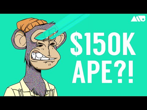 What the Heck is the Bored Ape Yacht Club (BAYC) NFT Project? $150K Apes?!