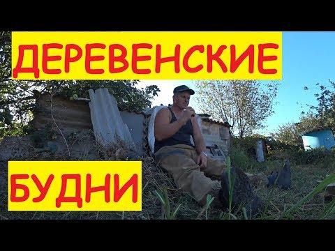 Деревенские будни / ПОЛКИ В ПОДВАЛ / Стеллаж для подвала / Семья в деревне