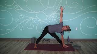 Protected: August 13, 2021 – Monique Idzenga – Hatha Yoga (Level II)