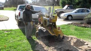 The Stump Grinder from Hell