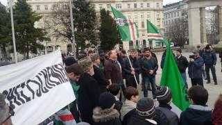 Митинг в Вене
