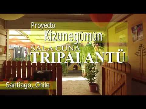 Proyecto Kizunegümün: una iniciativa para jugar y moverse libremente