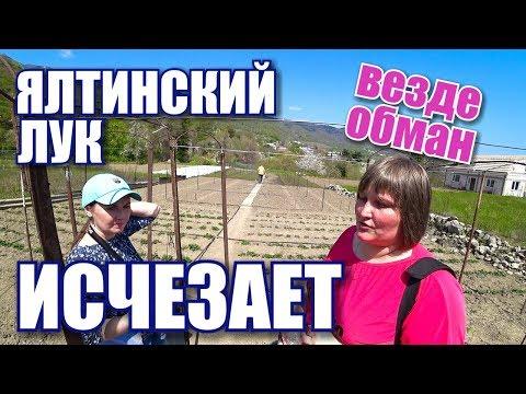 Сладкий ялтинский лук исчезает! Остерегайтесь подделок! Озеро Бирюзовое и Ровное. Крым сегодня 2019