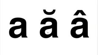 banh mi pronunciation - TH-Clip