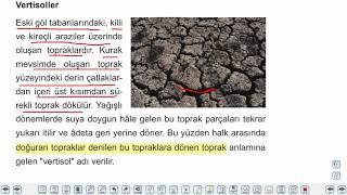 Eğitim Vadisi 10.Sınıf Coğrafya 9.Föy Toprağın Hikayesi 3 Konu Anlatım Videoları