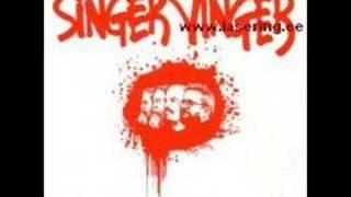 Singer Vinger- Aino on ainus
