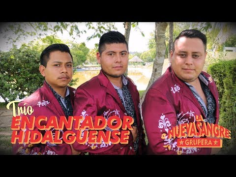 Musical: Trío Encantador Hidalguense - Por mis defectos