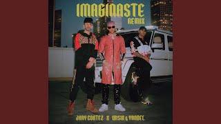 Imaginaste (Remix)
