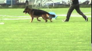 MENTOS Osterberger-Land - JACENTUS VIDEO
