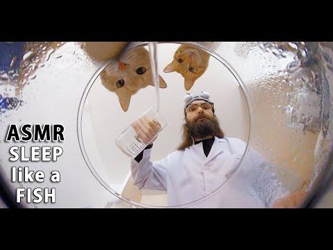 ASMR 🐟 Drowning you to SLEEP