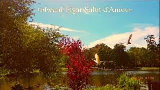 Edward Elgar  Salut d