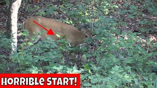 Deer Hunting With A Bow And Arrow 2017 *HORRIBLE START*