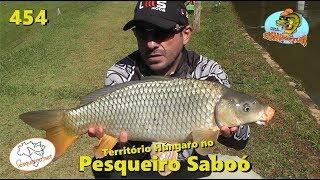 O reinado húngaro no Pesqueiro Saboó - Fishingtur na TV 454