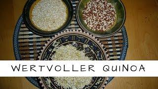 Quinoa - Kraftkorn der Inkas - wertvolles Lebensmittel für eine gesunde Ernährung!
