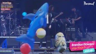 Brandon Flowers - I Can Change (Lollapalooza 2016) (San Isidro)