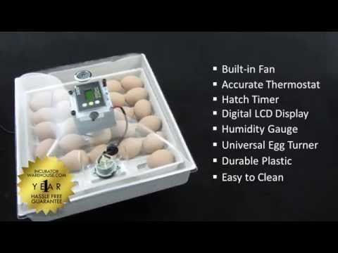 Incuview All In One Automatic Egg Incubator Incubator