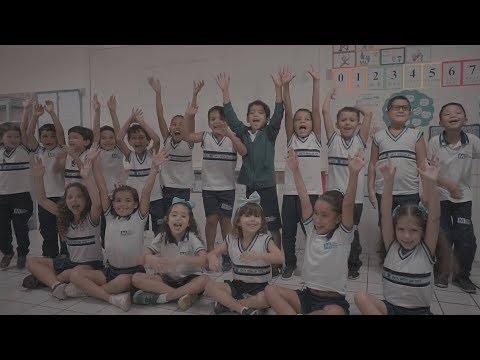 1º Ano Ensino Fundamental 2018