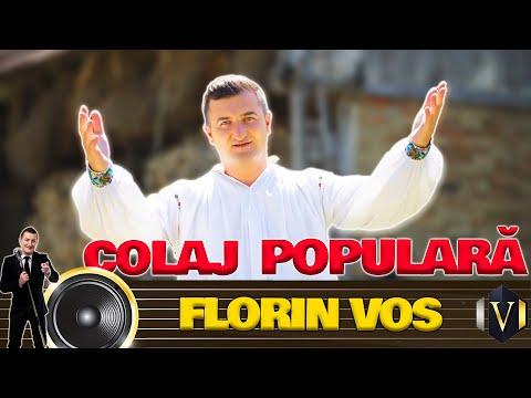 Florin Vos - Colaj populara Video