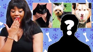 Single Woman Picks A Date Based On Their Pet  • The BachelorPet