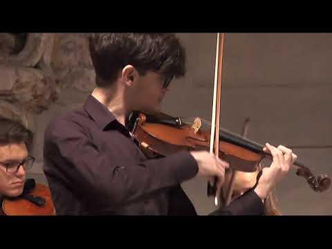 Concerto di Natale, III