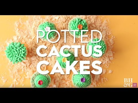Potted Cactus Cakes | Fun With Food | Better Homes & Gardens