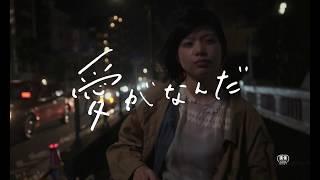 愛がなんだ(今泉力哉監督) – 映画特報