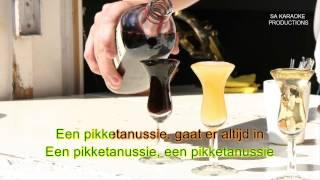 "Karaoke HD ""Een Pikketanussie"" (Johnny Jordaan)"