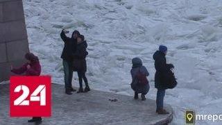 В Санкт-Петербурге снова замерзла Нева - Россия 24
