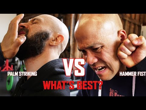 Palm striking VS Hammer Fists in Self defence combat which one is more effective? Master Wong