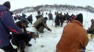 Ловля рыбы на западной двине в полоцке