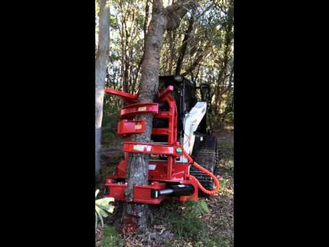Forestry, Land Clearing and Vegetation Management Tree Shear | Fecon