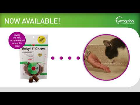 Enisyl-F Oral Paste for Cats 6-Pack - 600 mL Video