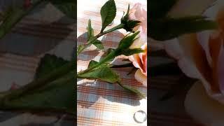 Одна веточка из букета.Кустовые розы холодный фарфор.
