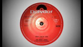 The Amboy Dukes - Who's Fooling Who