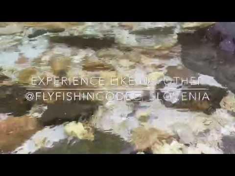 Flyfishing - So?a river, Slovenia