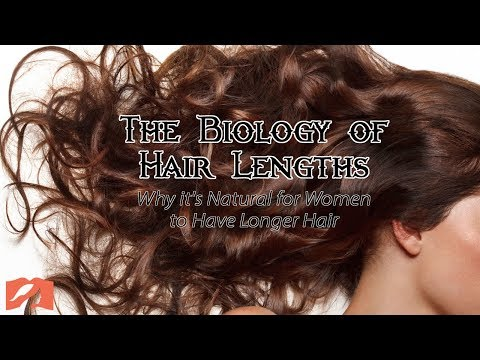 The Biology of Hair Lengths