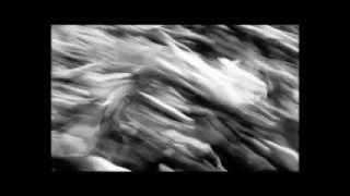 LINEA77 Ft. SUBSONICA   66 (Diabolus In Musica)