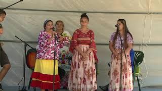 Nemzetiségi Nap Kalocsán  Horvát, Roma és Sváb Hagyományok Elevenedtek Fel Az Érsekkertben