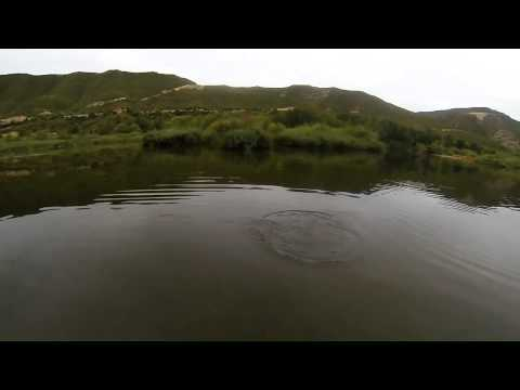 Bass Fishing @ Riba Roja River Ebro 2014
