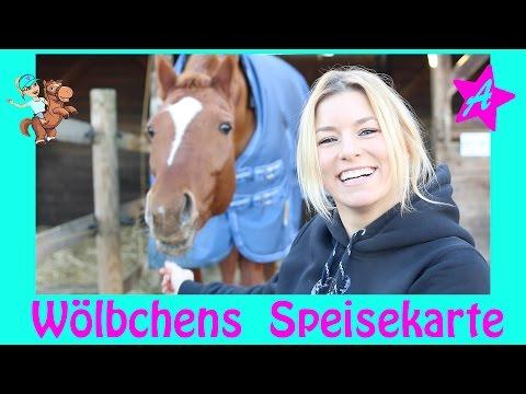 Wölbchens Futter Routine I Pferdefutter I how to Futterplan