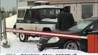 Алёна Щипина