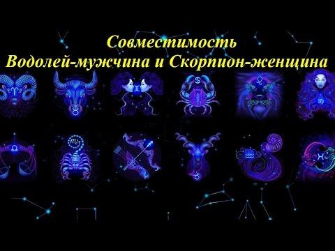 Гороскоп на 2015 год петух-телец