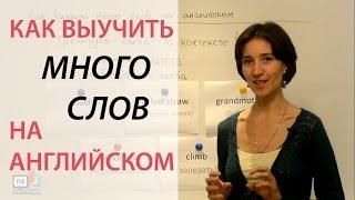 Как выучить много слов на английском