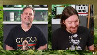 Grow Talk 997: Raising Humidity, Strain Suggestions, & Auto Flowers